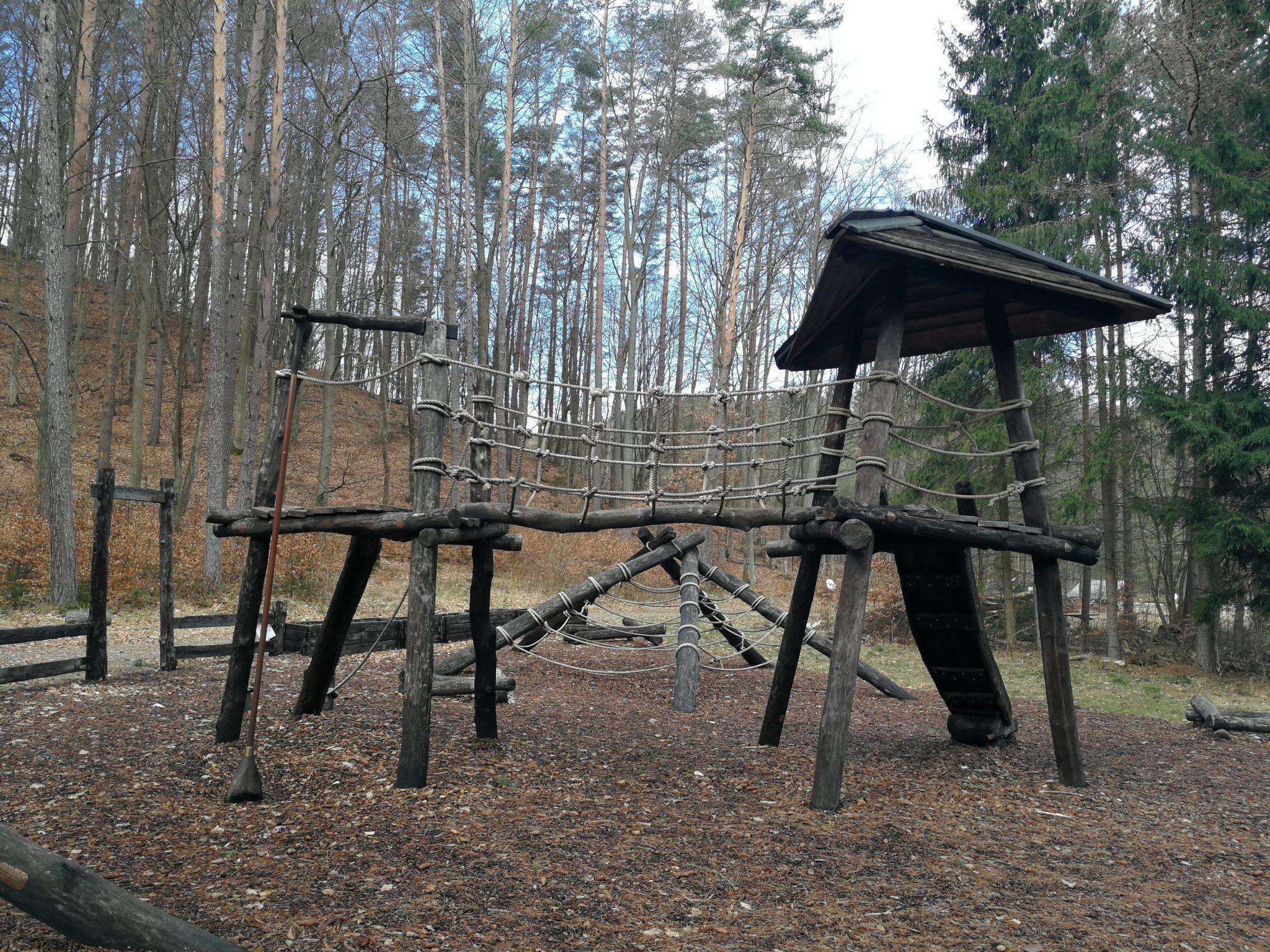 SZCZEGÓŁY ZAŁĄCZONEGO PLIKU Leśny-Ogród-Botaniczny-w-Marszewie-zdjęcie-Ania-Anna-Kotula-z-Tour-Guide-Service-Gdańsk