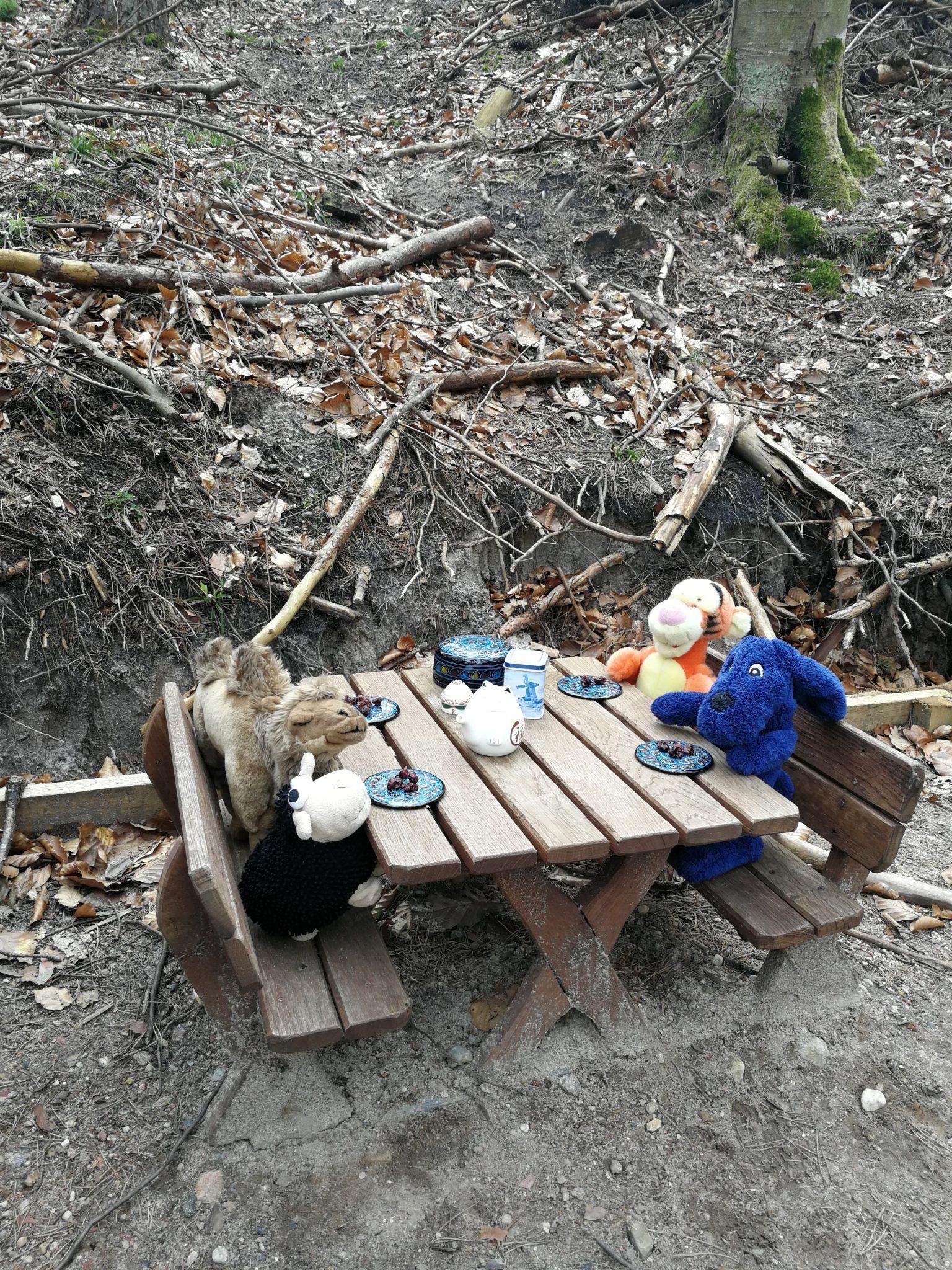 Szlak-Alicji-w-Marszewie-ławeczki-piknikowe-dla-skrzatów-z-których-chętnie-korzystają-maskotki