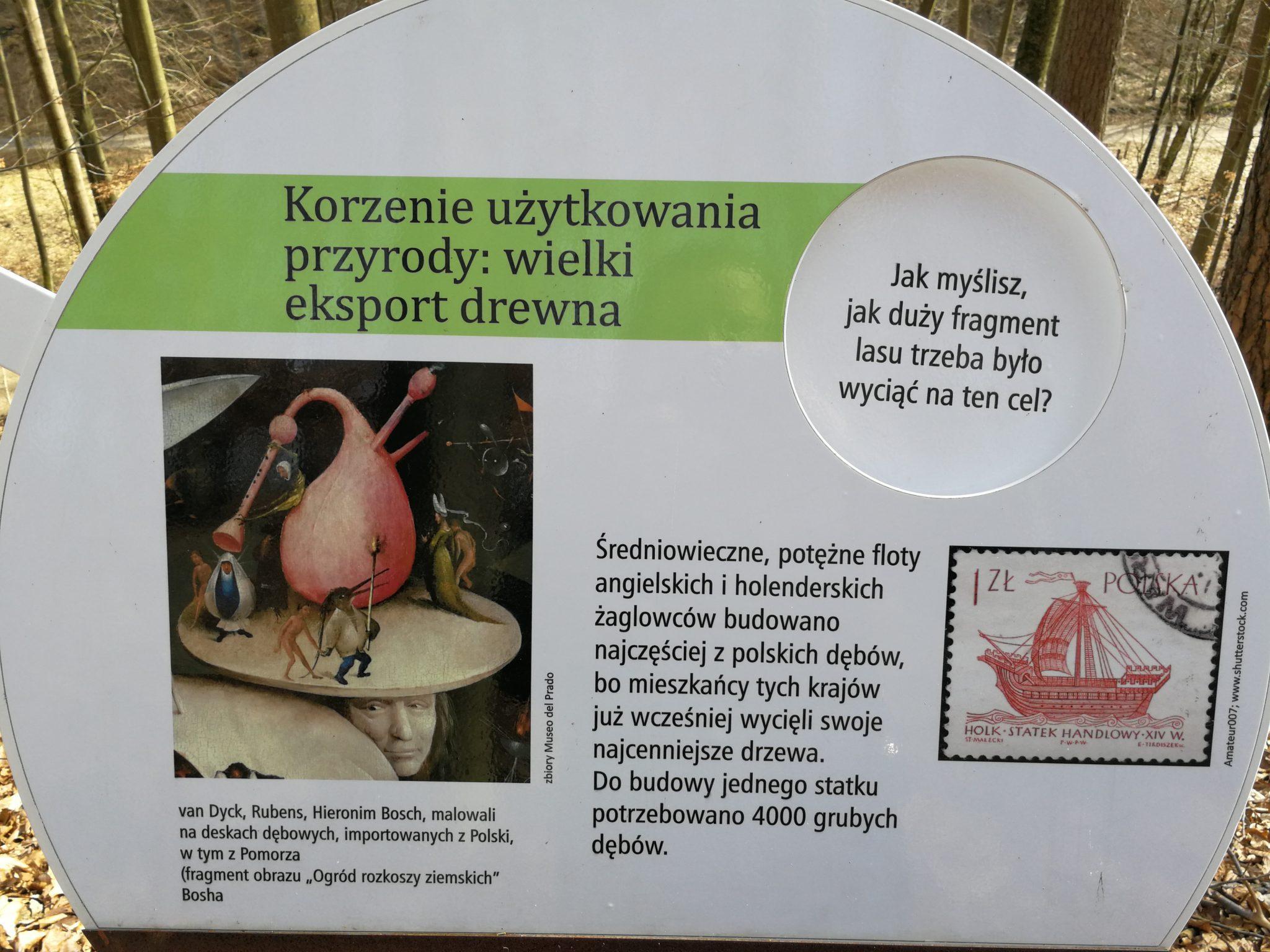 Leśny-Ogród-Botaniczny-w-Marszewie-Rubens-malował-na-polskich-deskach-dębowych