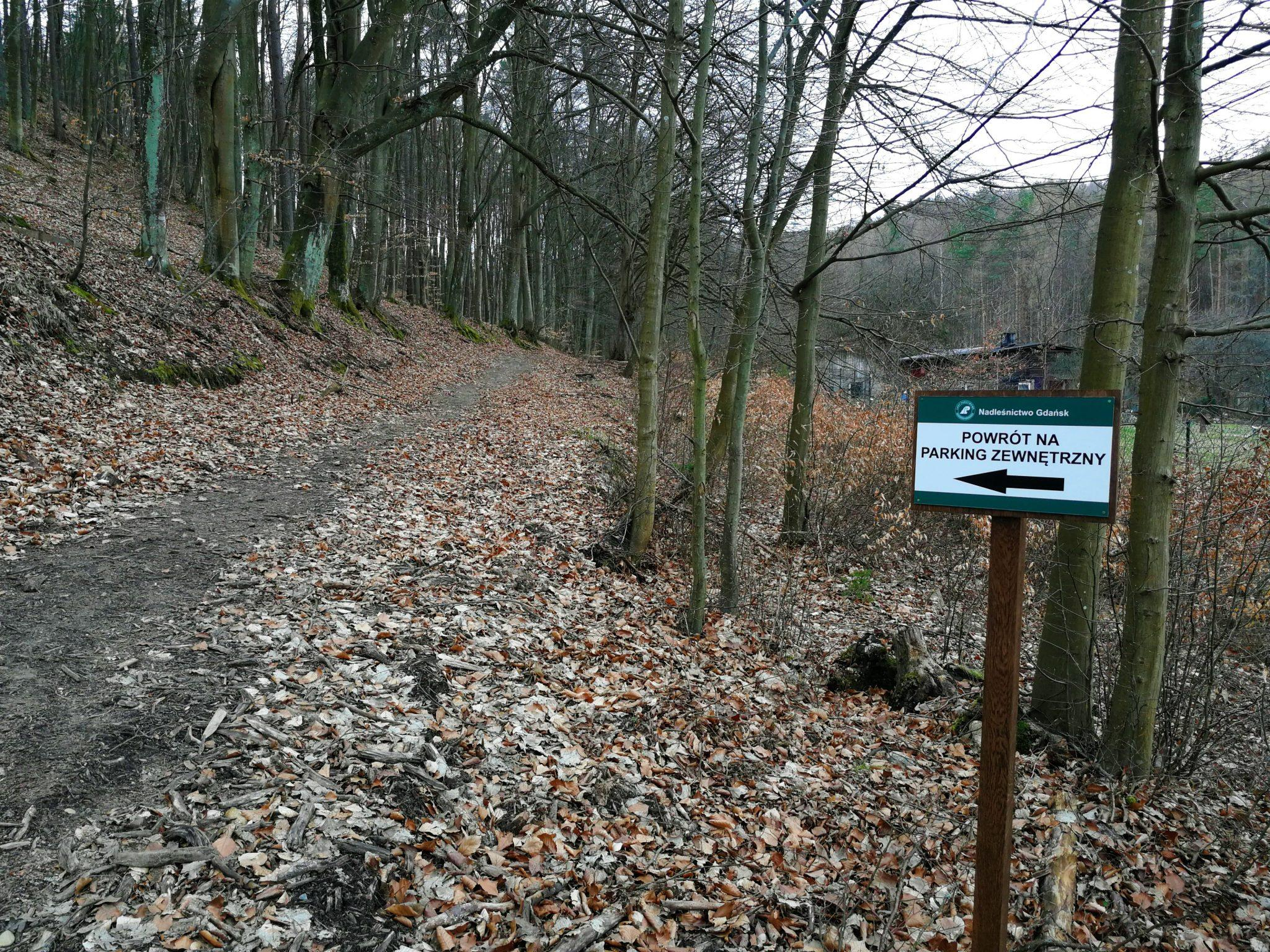 Północne-zejście-ze-Szlaku-Korzeni-gdy-LOB-Marszewo-jest-zamknięte-autor-Ania-Anna-Kotula