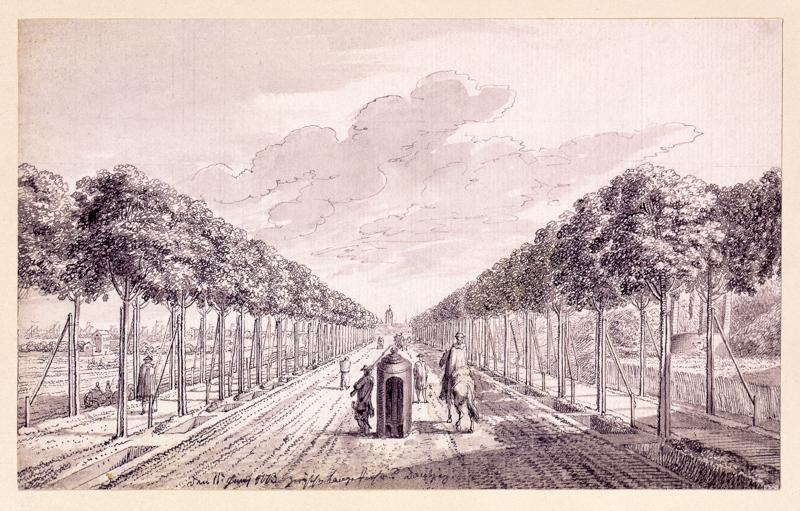 Wielka_Aleja,_założona_przez_Daniela_Gralatha_I,_na_rysunku_Daniela_Chodowieckiego,_1773